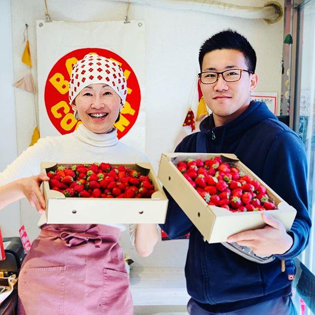 地元のいちご農家上原脩太さんです。